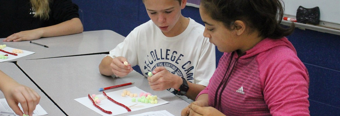 Eighth grade students Daniel Puckett and Kailee McManaway work to construct a model of DNA in Mrs. Roach's science class.