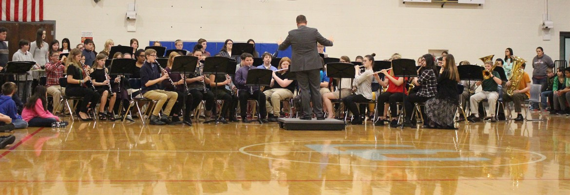 The CCMS ban performs at the annual Veteran's Day assembly.